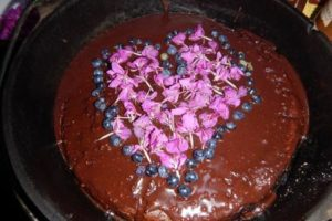 chocolate cake, fireweed, blueberry, sourdough cake, celebration, dutch oven, wild women expeditions