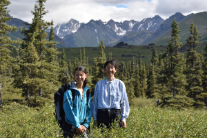 wilderness, backpacking, alaska vacation, all inclusive, all women trip, wilderness women