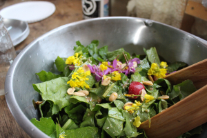 greens, salad, homestead, edible flowers, wild greens, wildcrafted, alaska